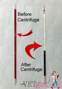 Blog - PCV-TP-BeforeAfter Centrifuge