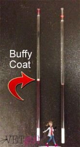 Blog - PCV-TP-Buffy Coat