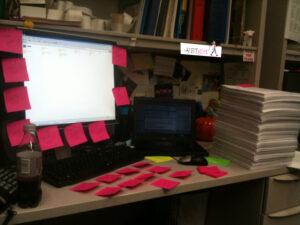 VETgirl_Efficient_Veterinarian_Busy_Desk